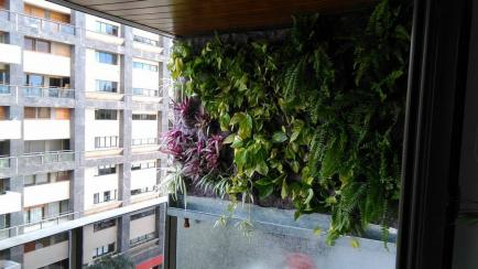 Datos y secretos sobre jardines verticales: ni tan caros, ni tan complejos