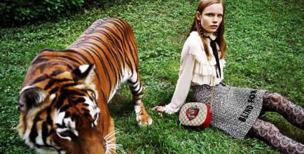 Si amás a Gucci, tenés que amar a los animales