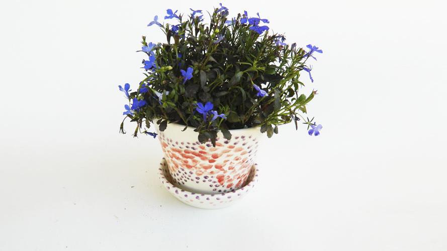 Decoración con pequeños objetos de cerámica