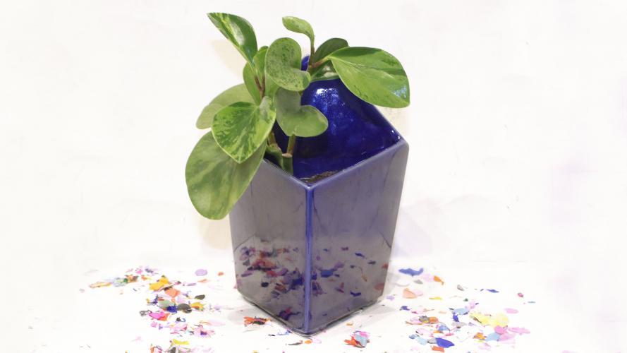 8 buenos regalos para tus seres queridos