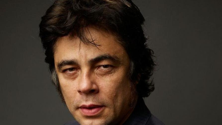 21) Benicio del Toro